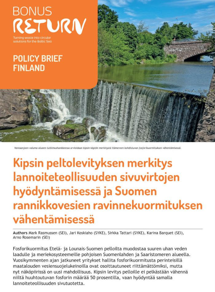 BonusReturn_PolicyBrief2020_FINLAND_FIN_Digi_compressed-1